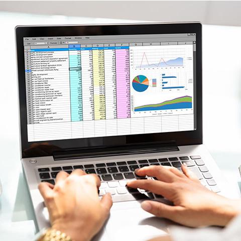 Spreadsheet on laptop