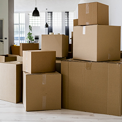 Several boxes in a room